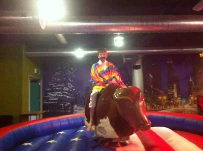 Rodeo Bull for Hire